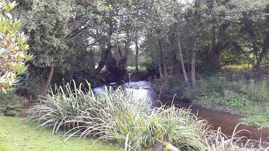 Brecon, UK: FB_IMG_1476649373624_large.jpg