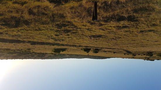 Amakhala Game Reserve, South Africa: 20161009_172801_large.jpg