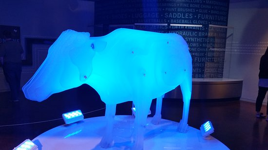 Fort Worth Museum of Science & History: 20161010_190442_large.jpg