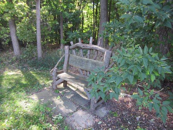 Penn Yan, นิวยอร์ก: Entrance to the woods near our cabin.