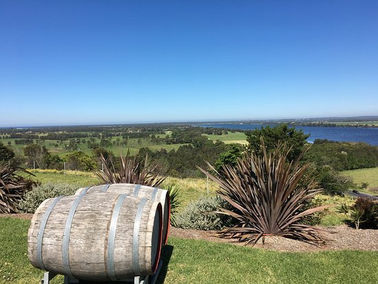 Gorgeous winery set atop the hill with stunning views of the shoalhaven river. Stopped here on t
