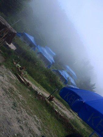 Pangot, India: photo1.jpg