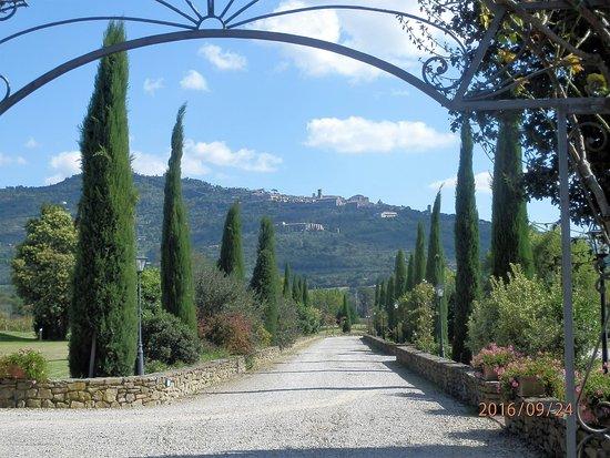 Relais Villa Baldelli : Spectacular view of Cortona from the grounds of Villa B.