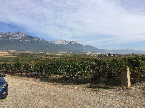 Laguardia, Spanien: photo2.jpg