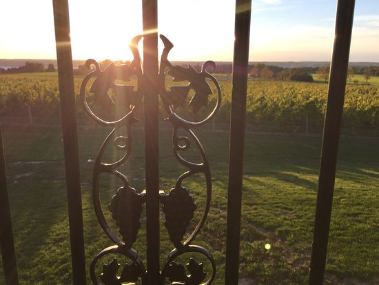 Three Brothers Wineries and Estates: Beautiful!!