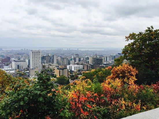 Montreal, Canada: photo1.jpg