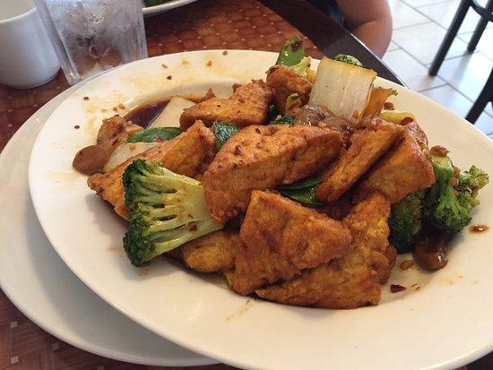 Carlisle, PA: fried tofu with brown sauce
