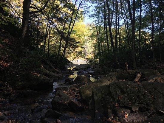Ohiopyle, Pensilvanya: Beautiful Views Downstream
