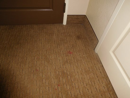 Morrow, GA: Pink stains all over carpet as well as others