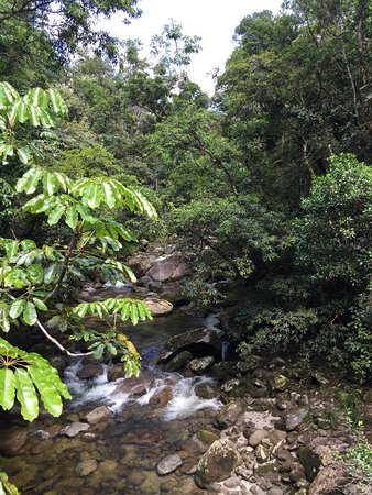 Mossman, Australia: Walk The Tropics