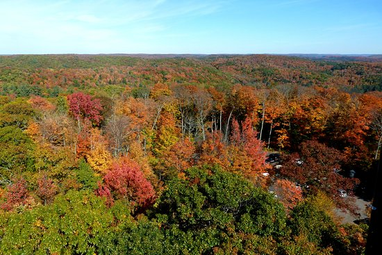 Amazing fall view from atop the Dorset Lookout Tower