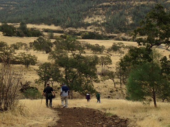 Hiking In Upper Bidwell Picture Of Bidwell Park Chico Tripadvisor