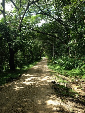 Nicoya, Costa Rica: Walk from hotel up to Barra Honda Park when buy tickets for hike and caves.