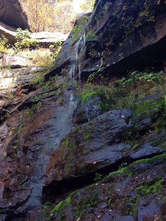 Haines Falls, estado de Nueva York: photo4.jpg