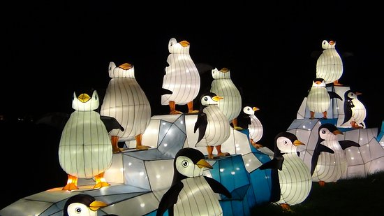 Hales Corners, WI: China Lights - Penguin Lanterns