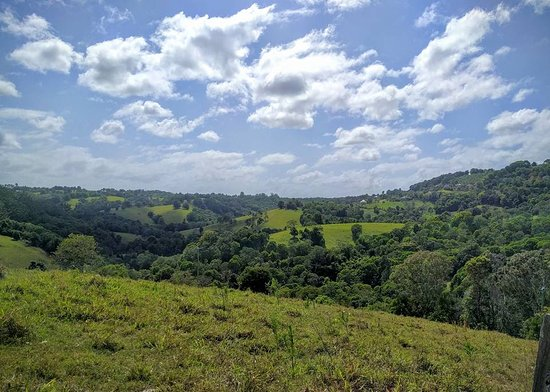 Cooroy, Australia: The surrounding scenery. Picture taken from the property grounds.