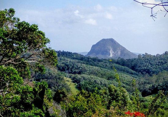 Cooroy, Australia: View from the front balcony of the Federation Cottage (all cottages would have this view)