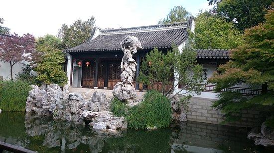 New York Chinese Scholar's Garden: DSC_0860_large.jpg