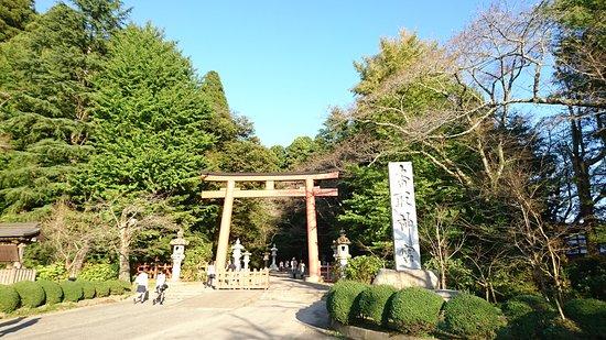 Katori, ญี่ปุ่น: DSC_0163_large.jpg