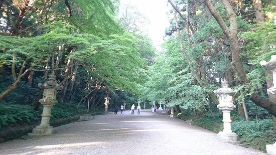 Katori, ญี่ปุ่น: DSC_0166_large.jpg