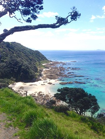 Mangawhai, Nowa Zelandia: photo1.jpg