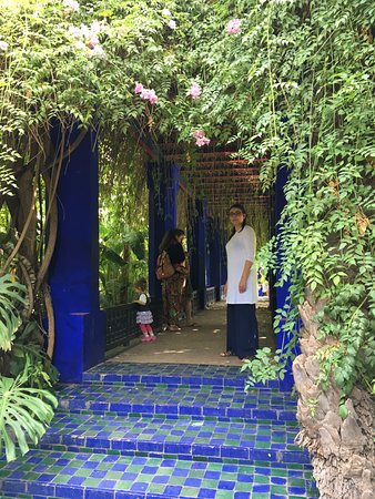 a small bridge in jardin majorelle picture of jardin majorelle marrakech tripadvisor. Black Bedroom Furniture Sets. Home Design Ideas