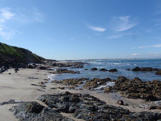 Beach near Kaka Point, Catlins, Otago - Nov 2015