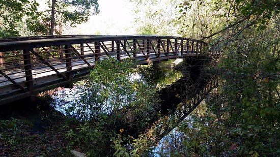 Felton, DE: Pond Side Trail