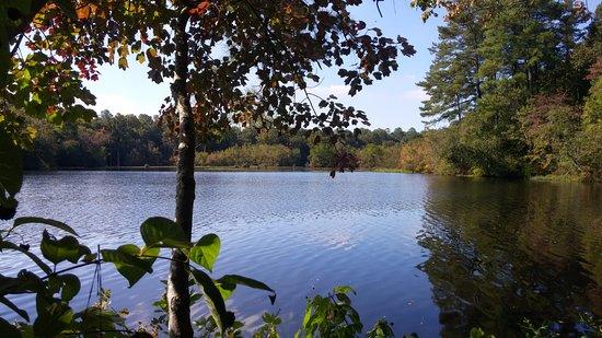 Felton, Делавер: Pond Side Trail