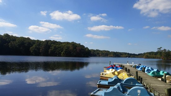 Killens Pond Campground: Paddle Boat Rental
