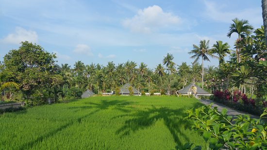 Bali Breeze Bungalows: Bali Breeze.. Paradise