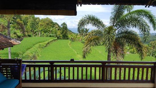 Munduk, Indonesië: Balcon de la chambre