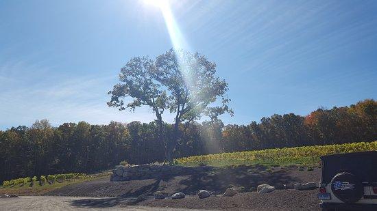 Woodstock, CT: Taylor Brooke Winery