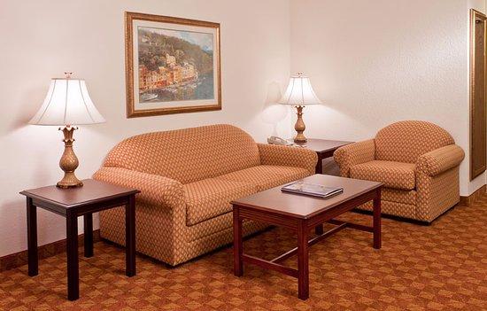 Ann Arbor Regent Hotel & Suites : One Bedroom Suite