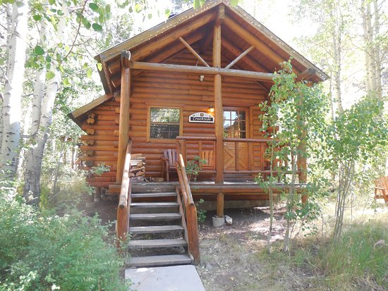Hope Valley, CA: Typical cabin accommodations; comfy and well equipped.