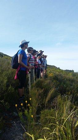 Elgin, Güney Afrika: Green Mountain Trail Day 2