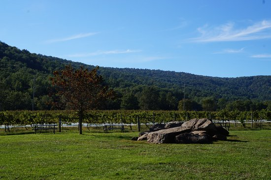 Huntly, VA: The view from the front of Rappahannock