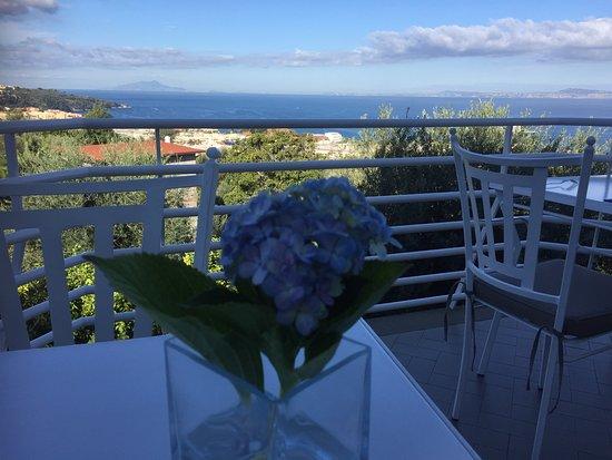 Villa Oriana Relais : beautiful view from patio