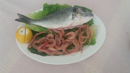 La Belle Helene : Fresh Fish with Fresh Shrimps