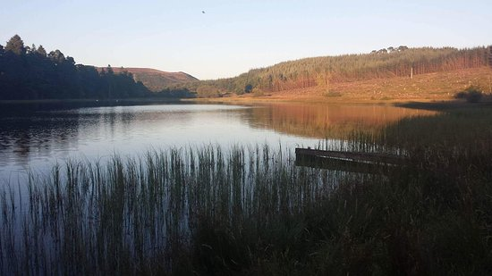 Ledcrieff & Lairds Trout Fisheries