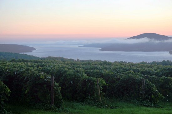 Canandaigua, NY: One of the many great views from vineyards along our trail.