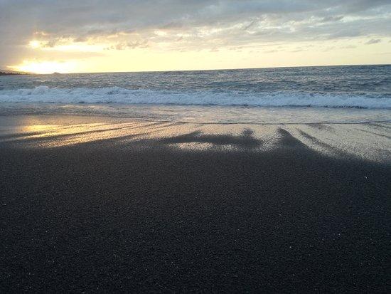 Playa Jardín: IMG_20161007_203116_large.jpg