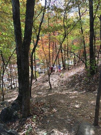 Auburn, ألاباما: Beautiful trails