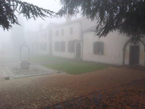 Baone, Italia: Museo Naturalistico di Villa Beatrice