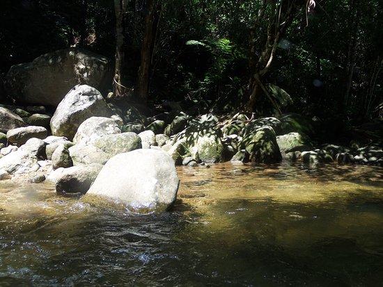 Silva Jardim 비엔비