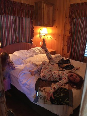Remarkable Second Bedroom This Stinker Made That Mess Picture Of Interior Design Ideas Gentotryabchikinfo