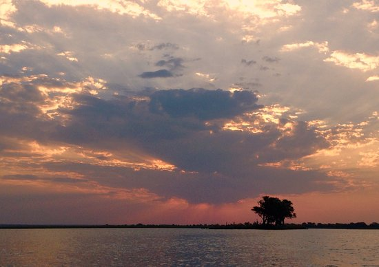 Kasane, Botswana: photo8.jpg