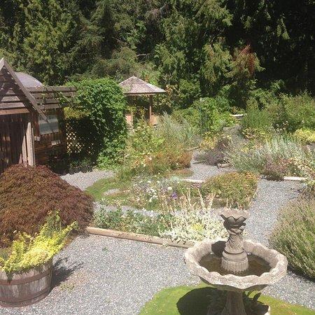 Ladysmith, Kanada: lovely garden
