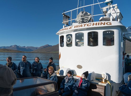 Dalvik, Iceland: On Board the Boat
