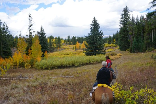 Turpin Meadow Ranch: Guided horseback tour through mountains...awesome.